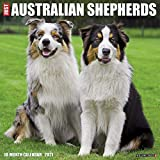 Just Australian Shepherds 2021 Calendar